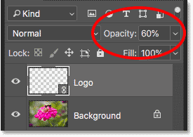second-smart-object-opacity-60percent.png